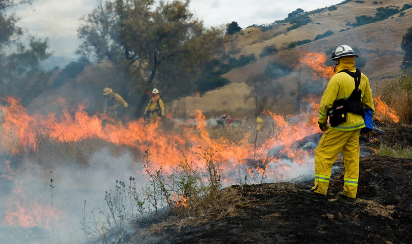 Wildland Fire Fighting Training, Equipment, Material and Supplies